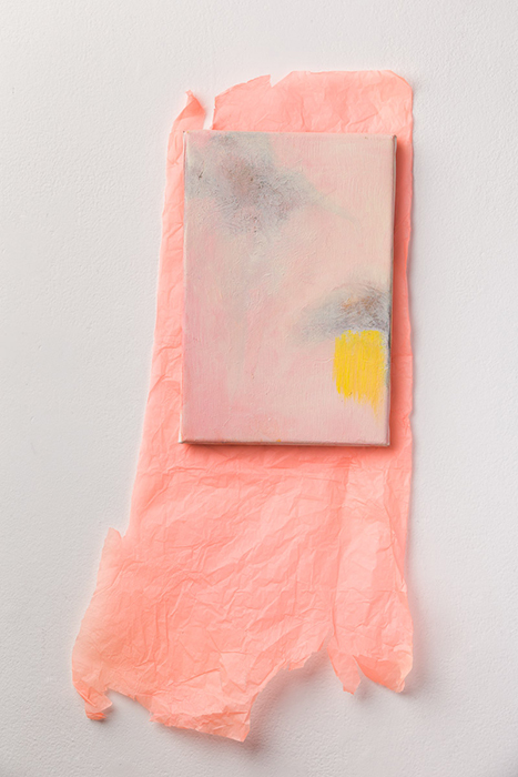Untitled, 2012 Oil on Canvas and Tissue Canvas 20cm x 30cm